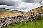 Dry stone wall and ladder stile at Twisleton Scar near Ingleton, Yorkshire Dales, North Yorkshire, Yorkshire, England, United Kingdom, Europe