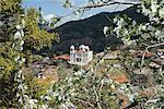 Printemps vue, Pedoulas, hautes montagnes de Troodos, Chypre, Europe
