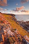Regardant vers le bas de la côte de Cornouaille vers Geevor mine, Cornwall, Angleterre, Royaume-Uni, Europe