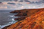 Regardant vers le phare de Pendeen et veille sur la côte de Cornouaille, Cornwall, Angleterre, Royaume-Uni, Europe
