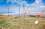 Fishing nets drying, Gourdon Bay, Scotland, United Kingdom, Europe