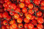 Tomaten für den Verkauf auf dem Markt am Sonntagmorgen, Pollenca, Tramuntana, Mallorca, Balearen, Spanien, Europa