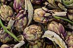 Artichauts, un des légumes frais sur le marché du dimanche matin, Pollenca, Tramuntana, Majorque, îles Baléares, Espagne, Europe
