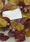 Laub und einen Brief