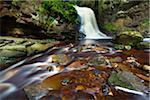 Hareshaw Linn Waterfall, Bellingham, Northumberland National Park, Northumberland, North East England, England