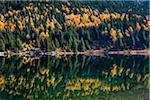 Larix Lake in Autumn, Rock Isle Trail, Sunshine Meadows, Mount Assiniboine Provincial Park, British Columbia, Canada