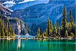 Evergreen Trees and Alpine Lake at Base of Mountains, Lake O'Hara, Yoho National Park, British Columbia, Canada