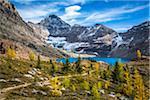 McArthur Lake and Hiking Trail in Autumn, Yoho National Park, British Columbia, Canada
