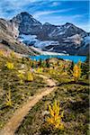 Hiking Trail at McArthur Lake in Autumn, Yoho National Park, British Columbia, Canada