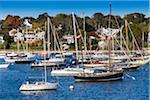 Sailboats in Marina and Hillside Homes, Vineyard Haven, Tisbury, Martha's Vineyard, Dukes County, Massachusetts, USA