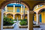 Courtyard Garden in Museo de Arte Colonial, Plaza de la Catedral, Havana, Cuba