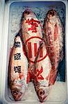 A fish market, close-up, Japan.