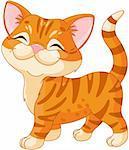 Cute striped kitten walking proud