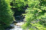Mountain stream in Tabayama valley, Yamanashi Prefecture