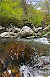 Mountain stream at Kawamatagawa Valley, Yamanashi Prefecture