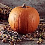 Pumpkin,corn and cobnuts