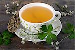 Wood sanicle ((Sanicula europaea): tea, tea leaves and fresh herbs
