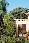 Garden surrounding courtyard doorway of luxury villa