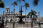 Terreiro de Jesus Square and Igreja Sao Domingos in the background, Salvador (Salvador de Bahia), Bahia, Brazil, South America