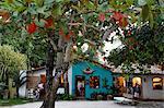 Colorful houses at Quadrado, the main square in Trancoso, Bahia, Brazil, South America