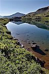 Kite Lake, Rio Grande National Forest, Colorado, United States of America, North America