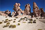 Rocky landscape on the Altiplano, Potosi Department, Bolivia, South America
