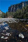 River flowing through the Carnarvon Gorge, Queensland, Australia, Pacific