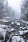 Dodh Kosi River, Khumbu (Everest) Region, Nepal, Himalayas, Asia