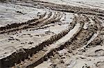 Deep tire tracks imprinted on a muddy terrain