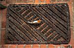 A dead Robin lying on a doormat