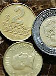 Close up of Uruguayan coins