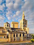 France, Provence, Avignon, Cathedral NotreDamedes Doms