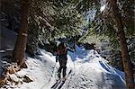Europe, France, French Alps, Haute Savoie, Chamonix, ski touring at Plan Aiguille MR