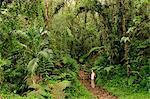 Hiking at Parque Nacional de Amistad near Boquete, Panama, Central America
