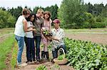 People looking at vegetable crop on farm