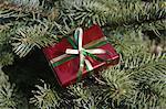 Tiny christmas gift on tree