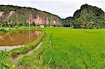 Lembah Harau West Sumatera