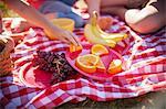 Fruit on picnic blanket in field