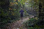 Runner on forest trail