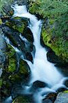 River rushing over rocky hillside