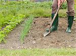 A gardener digging