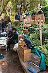 China, Yunnan, Kunming. Birds for sale in Kunming.