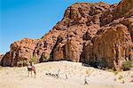 Chad, Elikeo, Ennedi, Sahara. Toubou tribesmen drive their goats to water across harsh terrain.