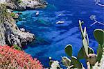 Italy, Campania, Napoli district, Capri.