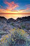 Italy, Sardinia, Olbia Tempio district, Budoni. coastline.