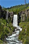 Tumalo Falls of Tumalo Creek, Deschutes County, near city of Bend, Central Oregon, USA