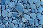 Driiftwood and pebbles at Rialto Beach, Olympic National Park, Clallam County, Washington, USA