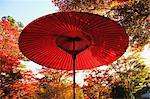 Red paper parasol at Showa Kinen Park, Tokyo