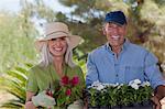 Older couple gardening together