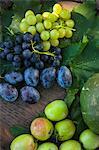 Fresh Grapes And Plums, Croatia, Slavonia, Europe